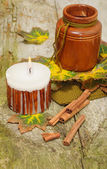 Autumn still-life on wooden background for Thanksgiving  — Stockfoto