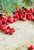 Christmas background with cranberries — Stock Photo