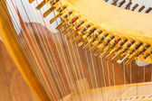 Celtic harp view from top — Stock Photo