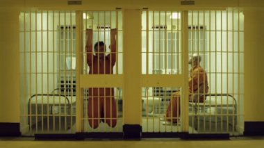 Inmates Exercise — Stock Video