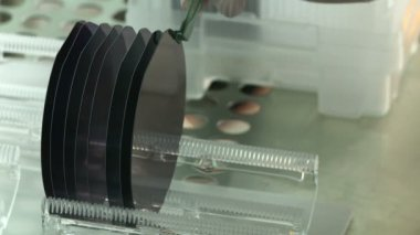 Silicon Wafers Detail — Stock Video