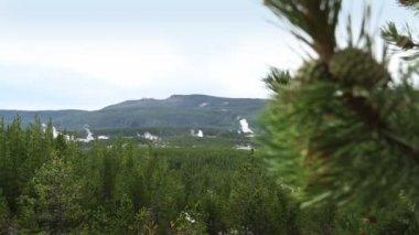 Norris Geyser Basin — Stock Video