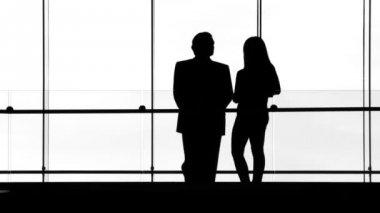 Silhouette Meeting — Wideo stockowe