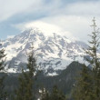 Mount Rainier — Stock Video #50513501