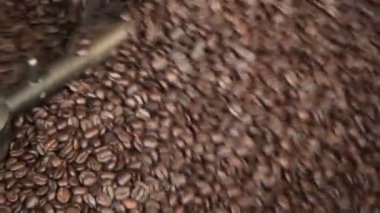 Fresh Roast Coffee Beans — Stock Video