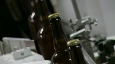 Beer Bottles Passing — Stock Video
