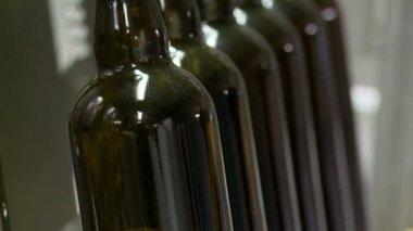 Imbottigliamento di birra — Video Stock