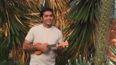 Tropical Ukulele — Stock Video