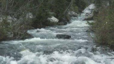 Narada Falls Rapids — Stock Video