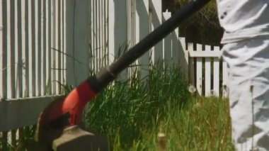 Weed Whacking — Stock Video