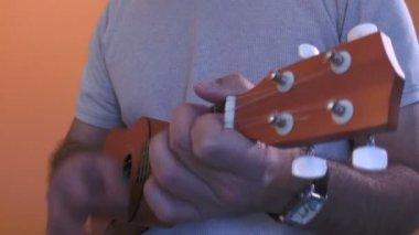 Ukulele Player — Stock Video