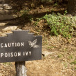Caution Poison Ivy — Stock Photo #49952955