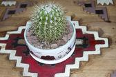 Cactus en poterie amérindienne sur table sculptée — Photo