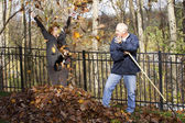 Leaf Raking — Stock Photo