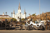 St Louis Cathedral with Mule Carriages — Stock Photo