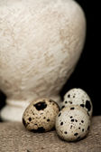 Quail eggs and an antique vase — Stock Photo
