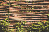 Traditional lath fence around a farmer's house in Ukraine  — Stock Photo