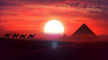 Kamel-zug fährt durch eine wüste in den sonnenuntergang. hd — Stockvideo