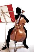 Silhueta com violoncelo — Foto Stock