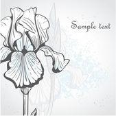 Dekorativa bakgrund med iris — Stockvektor