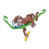 Sleeping monkey on the vine. — Stock Vector