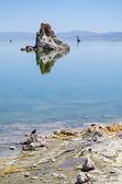 Lac mono — Photo