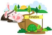 Rabbit and Tortoise — Stock Vector