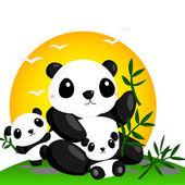Big Panda — Stock Vector