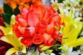 A bouquet of roses, floral pattern — Stock fotografie
