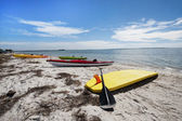 Honeymoon Island  - FL — Stock Photo