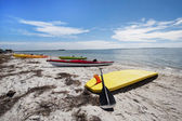 Kayaks and a surf board on a sandy beach of Honeymoon Island, Florida — 图库照片