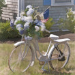 Постер, плакат: Hydrangea Bicycle