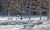 Snowy Blanket on Picnic Area — Stock Photo