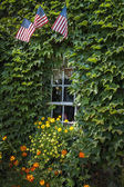 Flags & Ivy — Stock Photo