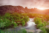 Valley with a creek in the mountains — Stock Photo