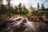 Forest Brook mountains in the background in Sayan in Russia — Stock Photo