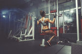 Young sexy girl lifts in the gym — Stock Photo