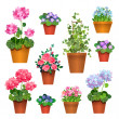 Room flowers in pots — Stock Vector #50929479