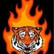 Tiger and fire — Stock Vector #50929905