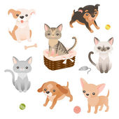 Puppies and kitties characters — Stock Vector