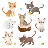 Set of  cat characters — Stock Vector