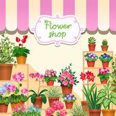 Houseplants in show-window of flower shop — Stock Vector