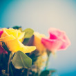 Yellow And Pink Roses — Stock Photo #50551609