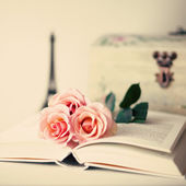 Vintage Roses on book — Foto Stock