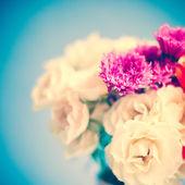 Vintage roses — Zdjęcie stockowe