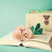 Vintage Rosen auf Buch — Stockfoto