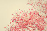 Pastel red autumn leafs — Stock Photo