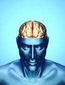 头与大脑 — Stockfoto