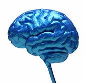Mavi beyin — Stok fotoğraf