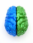 Blue end green brain — Stock Photo